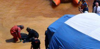 Cyprus serial killing