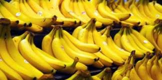 banana saging