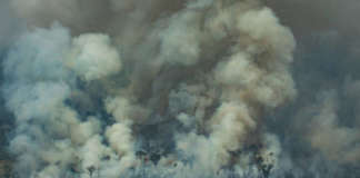 cropped Amazon wildfire image by Greenpeace