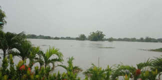 cropped Ineng floods Laoag 2