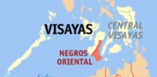 cropped negros oriental