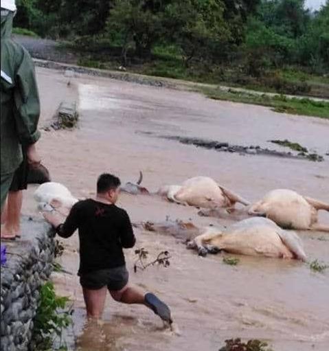 laoag floods
