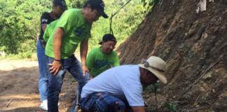 KBP tree planting