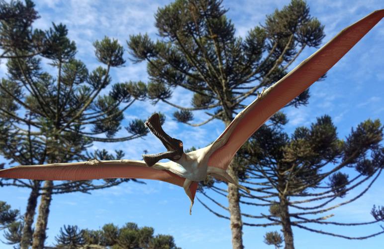 pterosaur dinausar