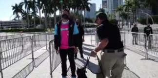 dog canine Miami Heat detect COVID