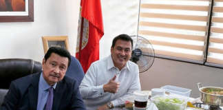lito lapid and mark lapid