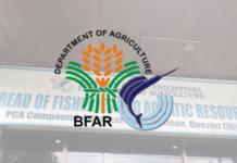 DA BFAR Logo Office
