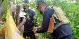 akbar terror group Alkhobar Maguindanao