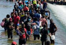immigrants haiti haitians